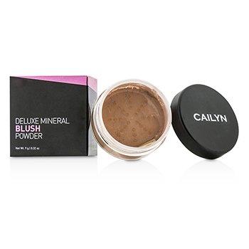 Cailyn Deluxe Mineral Blush Powder - #02 Burnt Orange  9g/0.32oz