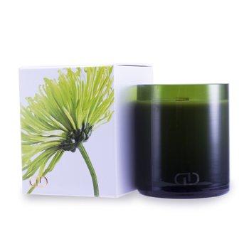 DayNa Decker Botanika Multisensory Candle with Ecowood Wick - Maja  170g/6oz