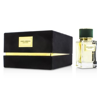 Dolce & Gabbana Velvet Vetiver Eau De Parfum Spray  50ml/1.6oz